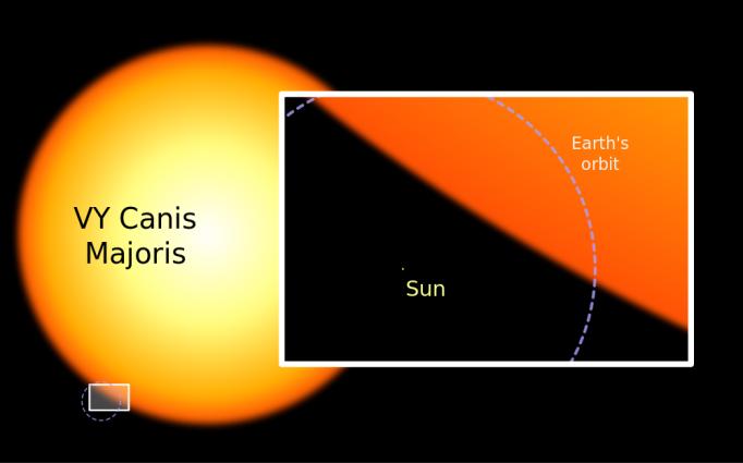 Comparação do Sol e da Órbita da Terra em relação à VY Canis Majoris. Fonte: www.theskepticsguide.org